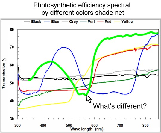 Photosynthetic_Efficiency